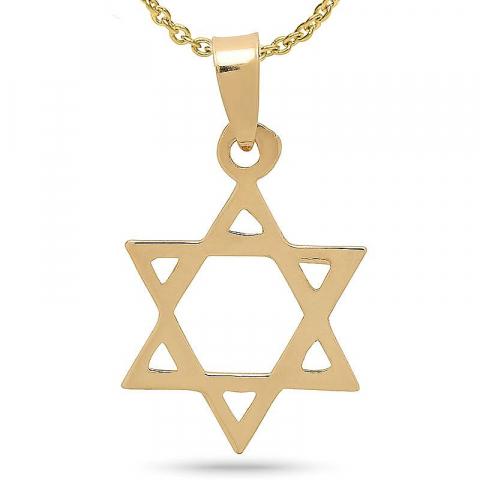 Davidster hanger met ketting in verguld sterlingzilver met hanger in 8 karaat goud