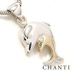 Mooi dolfijn hanger in zilver en 8 karaat goud
